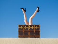 Louis Vuitton Legs