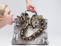 Python Birkin I