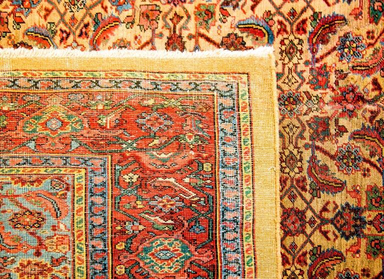 Wool Unbelievable Early 20th Century Bakshaish Rug For Sale