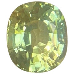 Unique Bi Color Green Yellow Sapphire 1.35 Carat Cushion Cut Rare Gem