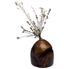 Unique Hand Sculpted Wooden Vase by Vlad Droz