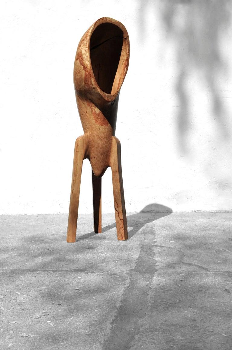 Organic Modern Unique Oak Sculpture Signed by Jörg Pietschmann For Sale