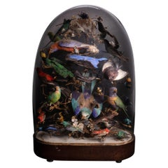 United Kingdom, 1880, Victorian Glass Dome with 36 Exotic Birds