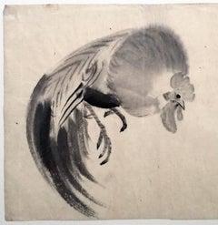Kako Morita:  Japanese Fighting Rooster