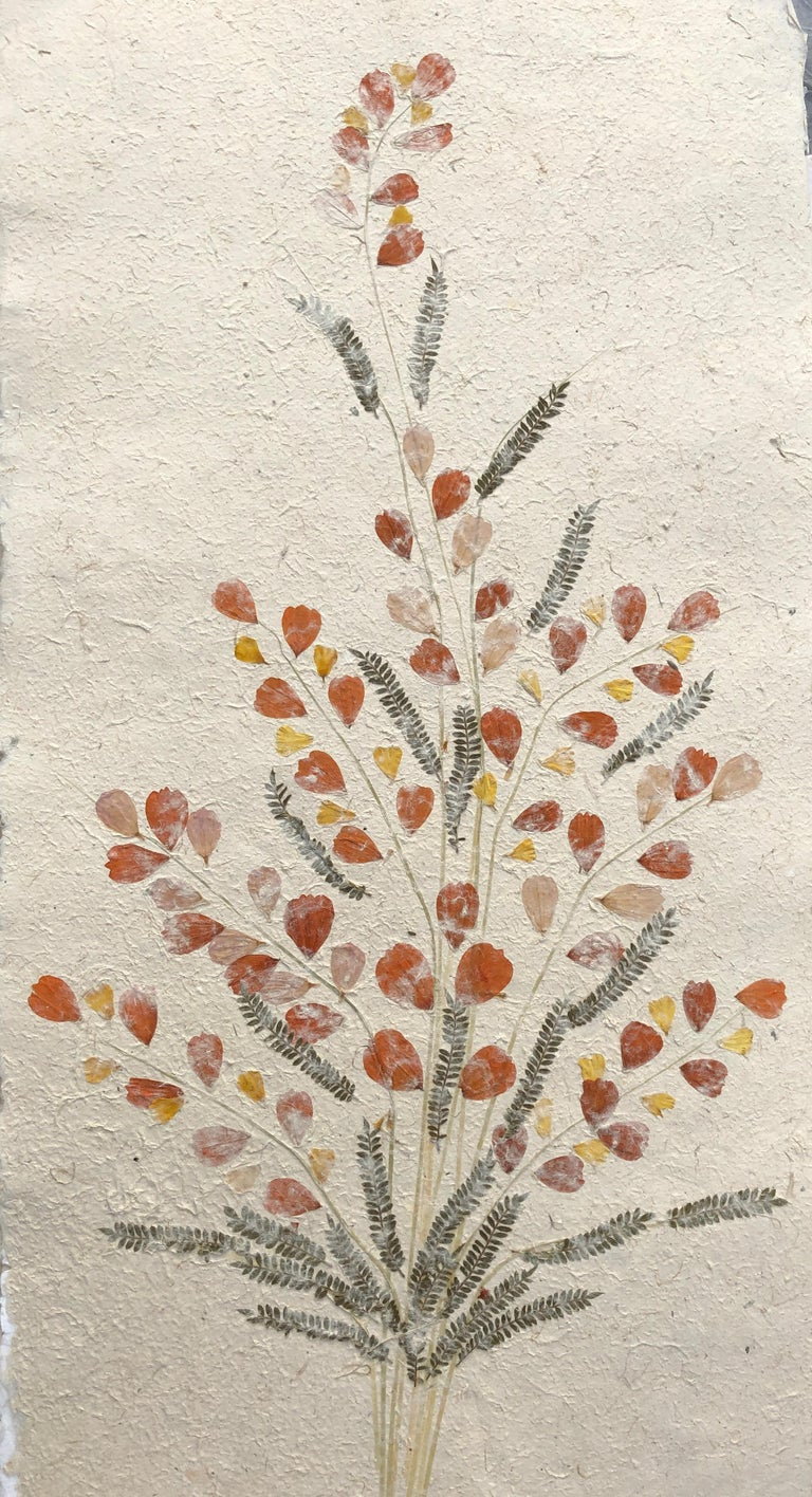 Madagascan Dried Flowers On Hand Made Paper - Art by Unknown
