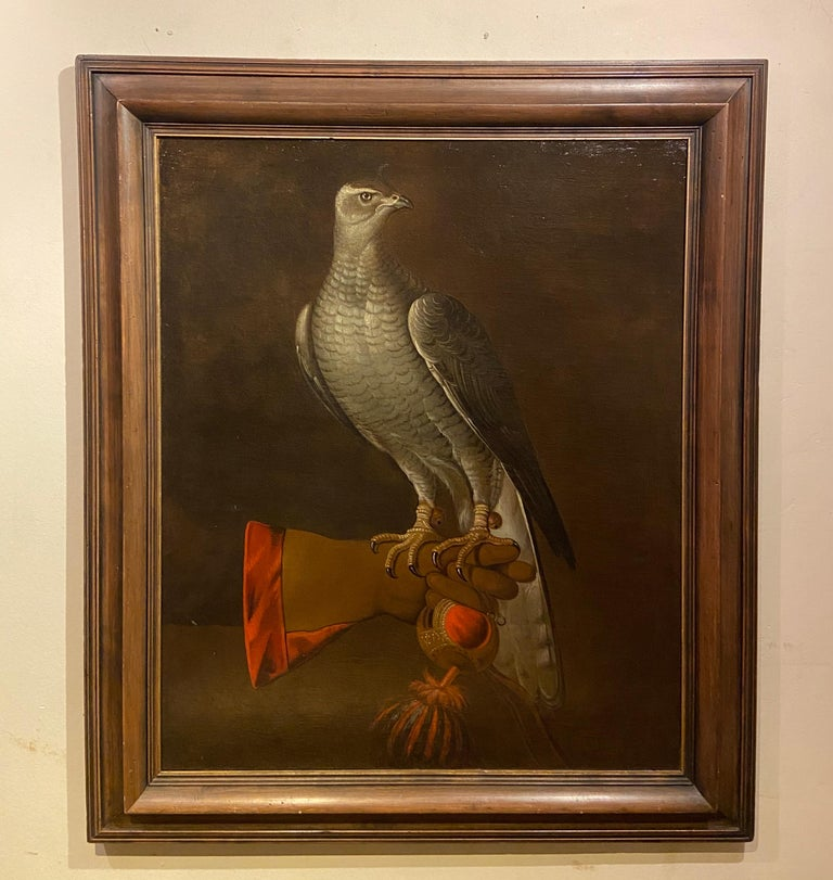 17th Century Dutch School Painting of a Goshawk - Brown Animal Painting by Unknown