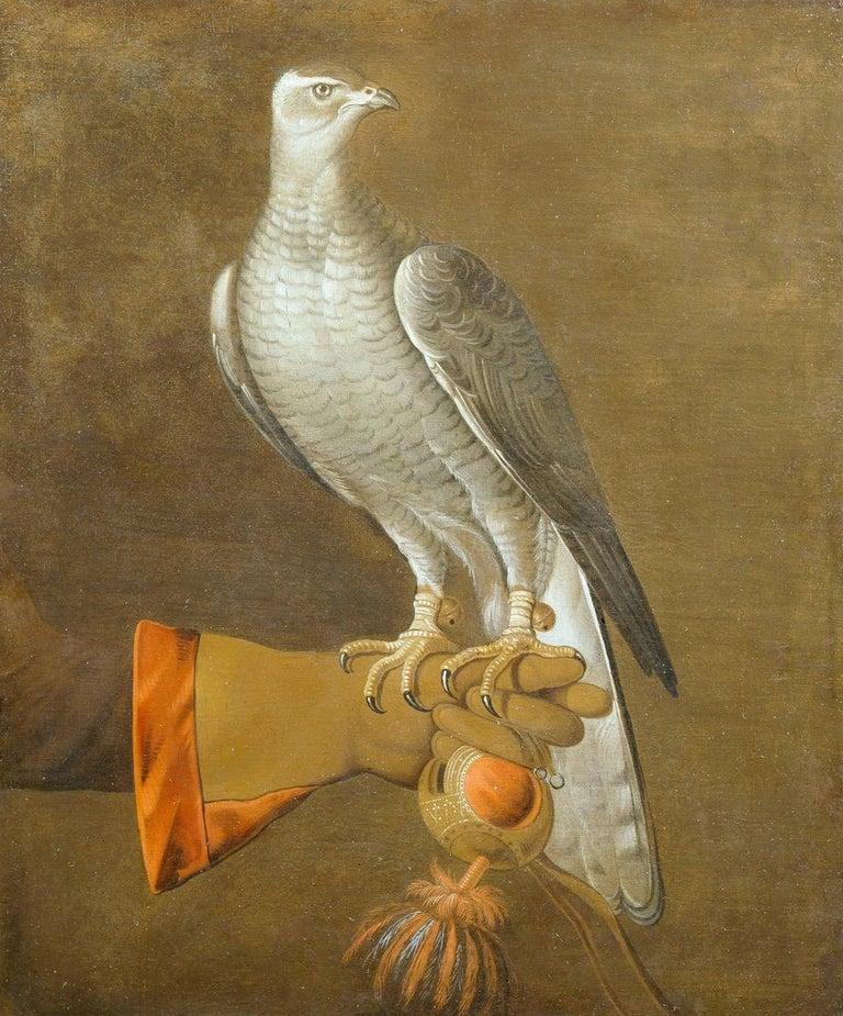 17th Century Dutch School Painting of a Goshawk For Sale 1