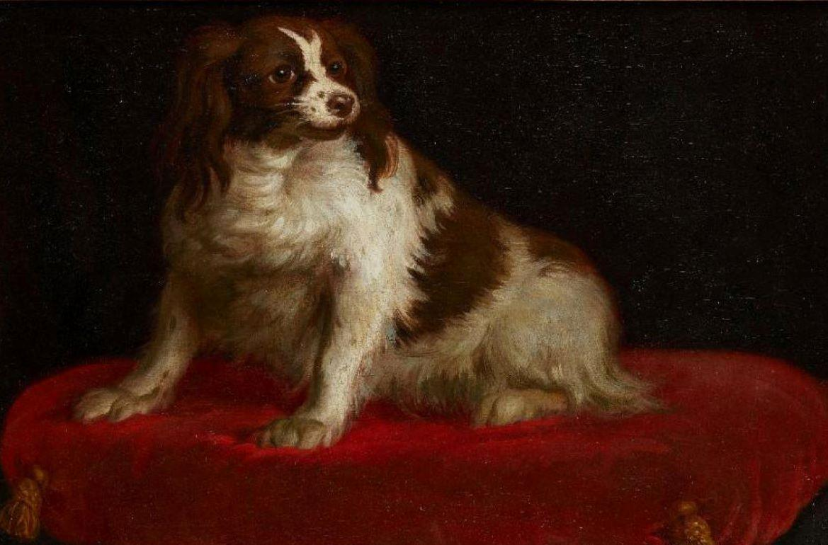 18th century German school portrait painting of a royal spaniel on a red cushion
