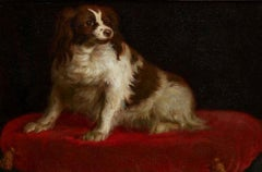 18th century German school portrait of a royal spaniel seated on a red cushion