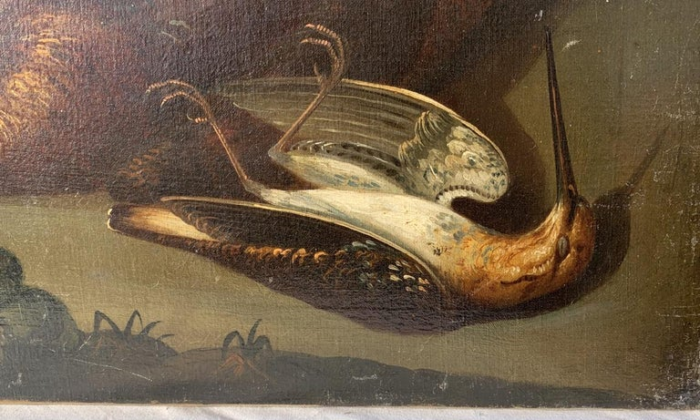 18th century Italian still life painting - Birds figures - oil on canvas Animal For Sale 6