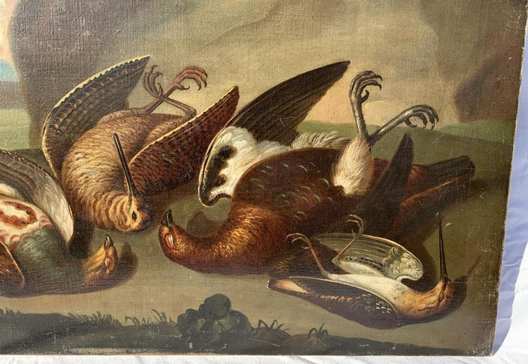 18th century Italian still life painting - Birds figures - oil on canvas Animal For Sale 1