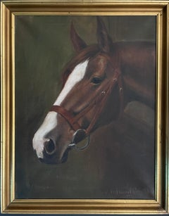 1930's English Oil Painting Head Portrait of a Chestnut Horse in Leather Bridle