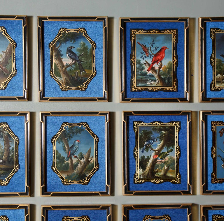 A Rare and Important Set of 28 Paintings Depicting Assorted Bird Species For Sale 9