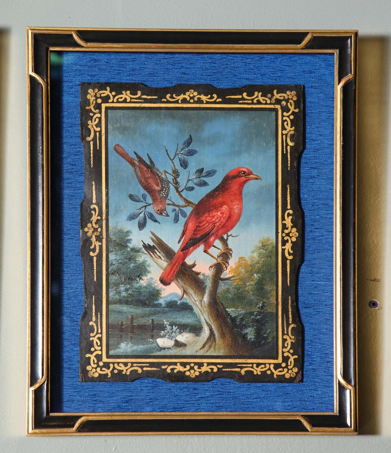 A Rare and Important Set of 28 Paintings Depicting Assorted Bird Species For Sale 11