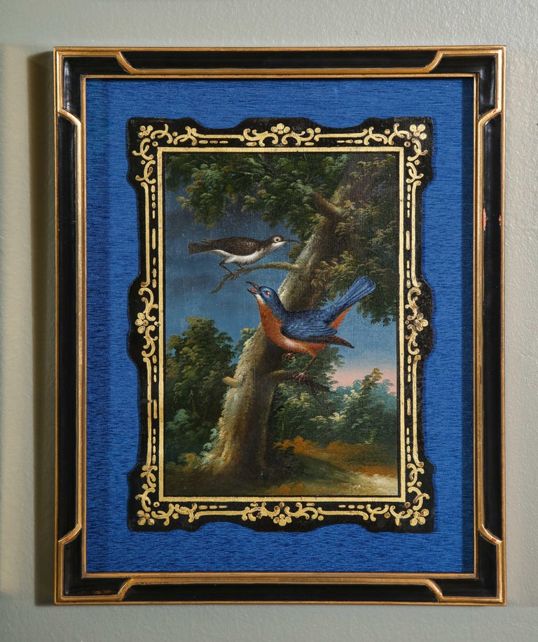 A Rare and Important Set of 28 Paintings Depicting Assorted Bird Species For Sale 2