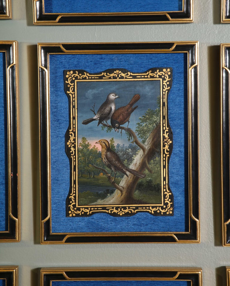 A Rare and Important Set of 28 Paintings Depicting Assorted Bird Species For Sale 3
