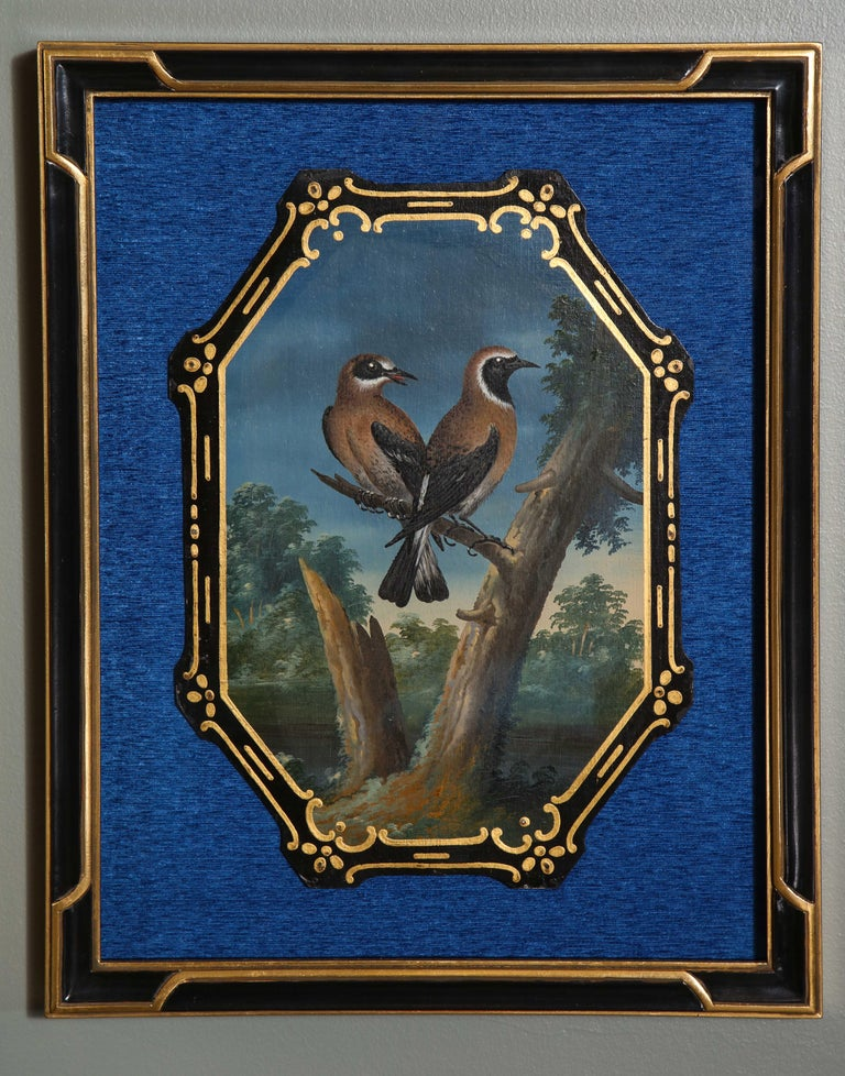 A Rare and Important Set of 28 Paintings Depicting Assorted Bird Species For Sale 5