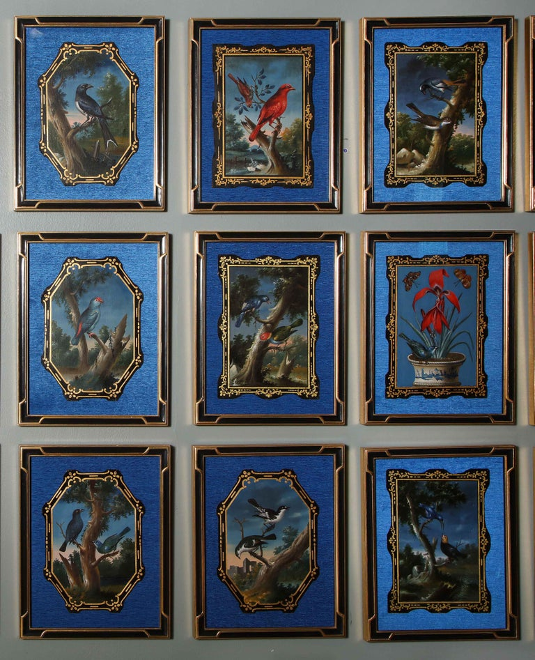 A Rare and Important Set of 28 Paintings Depicting Assorted Bird Species For Sale 6