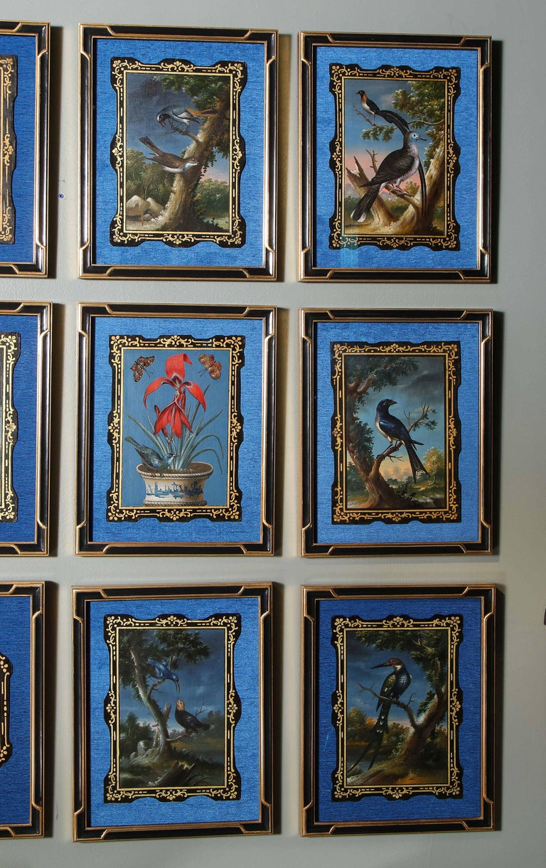 A Rare and Important Set of 28 Paintings Depicting Assorted Bird Species For Sale 7