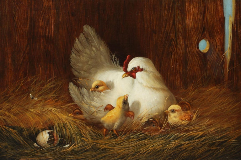 Antique American school incredibly finely painted portrait of chickens.  Oil on canvas, circa 1850. Unsigned.  Displayed in a period giltwood frame.  Image, 20