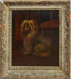American School, Portrait of a Shaggy Dog