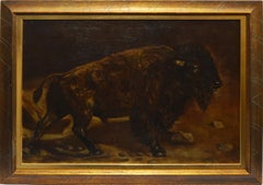 American School Western Native American Buffalo Study Oil Painting