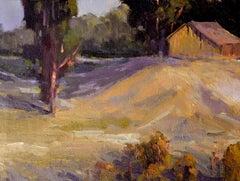 Carmel Valley Barn Landscape