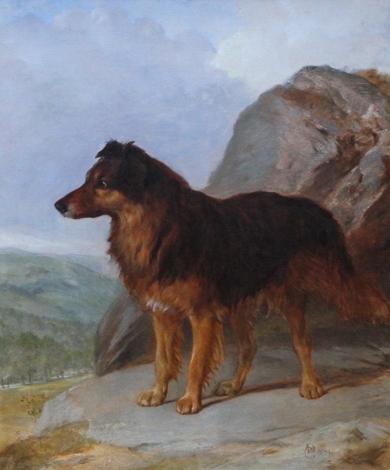 Collie Dog in a Landscape - 19thC dog portrait oil painting monogram signature For Sale 1