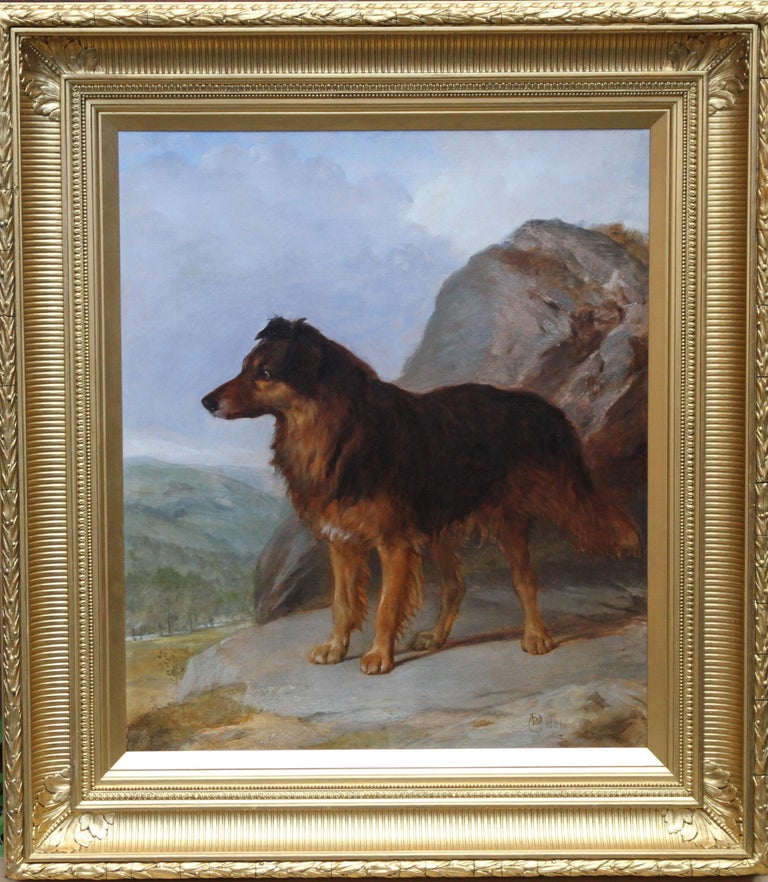 A fine 19th century oil painting portrait of a beautiful looking  Collie. Our canine friend is stood, very alert on a rocky outcrop overlooking a valley, perhaps looking for sheep or its owner. There is wonderful brush work and colouring on the