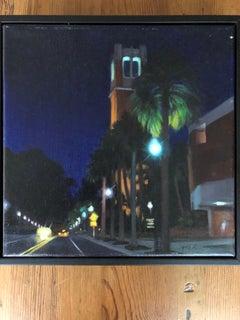 Contemporary Florida Night Scene