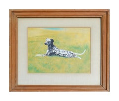 Dalmatian Dog In The Grass