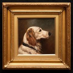 Dog Portrait of a Golden Retriever Circa 1900