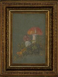 E. D - Signed & Framed Early 20th Century Oil, Still life of Fungi