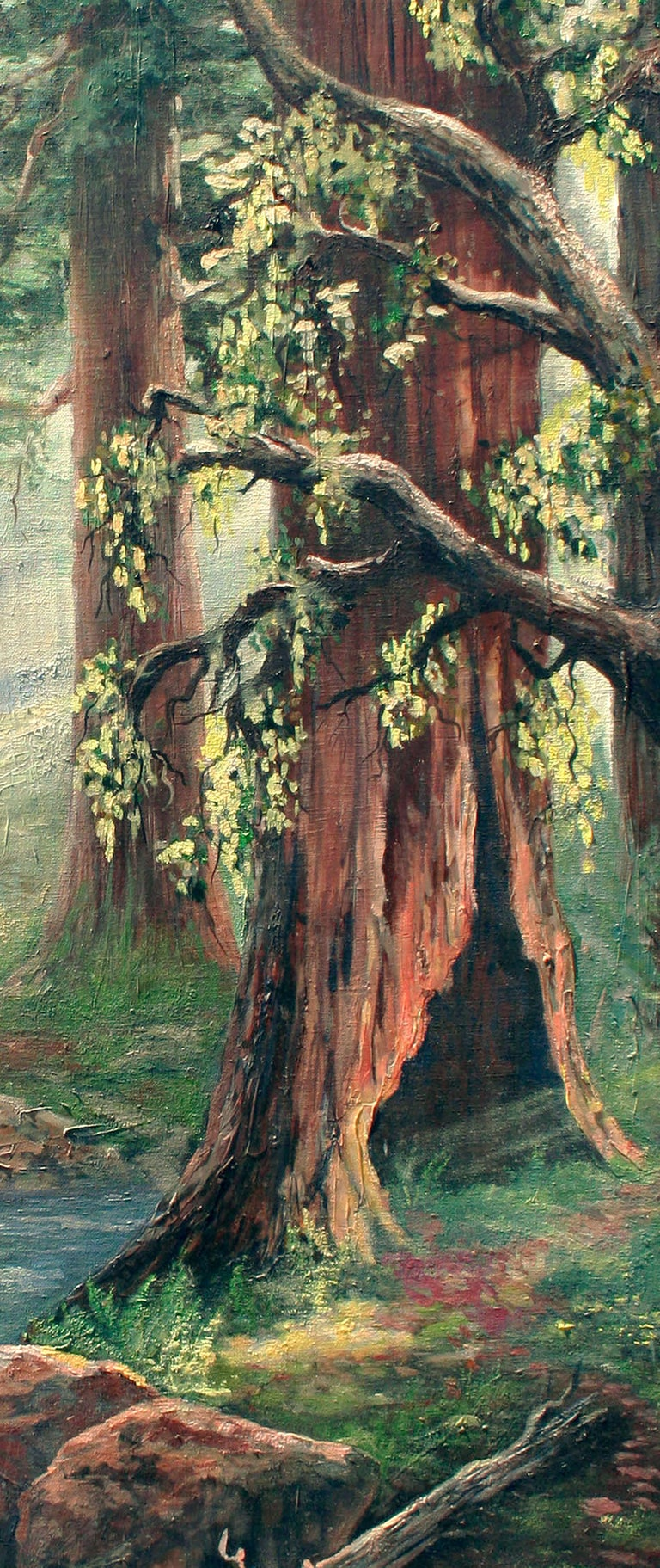 Enchanted Redwood Forest Landscape  - American Impressionist Painting by Unknown