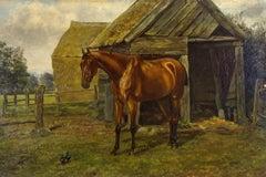 Fine Early 20th Century Oil - Irish Sport Horse in Paddock