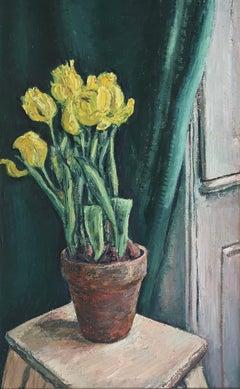 Flowers in terracotta pot