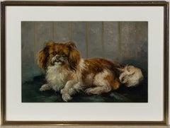 Framed Mid 20th Century Oil - Pekingese Dog