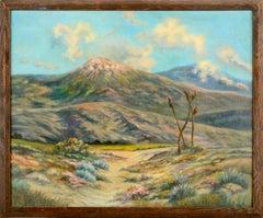 Mid Century Joshua Tree Desert Landscape