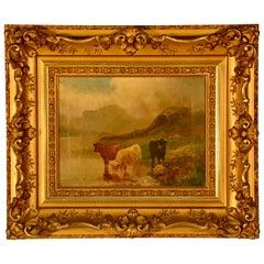 Oil on Canvas, Scottish Cattle