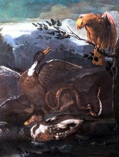 Parrot, Snake, Lizard and Ducks, 17th Century  Genoese School