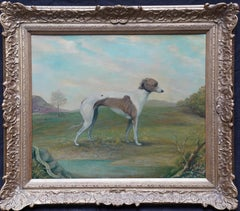 Portrait of Greyhound Midfield Role - British sporting art dog oil painting