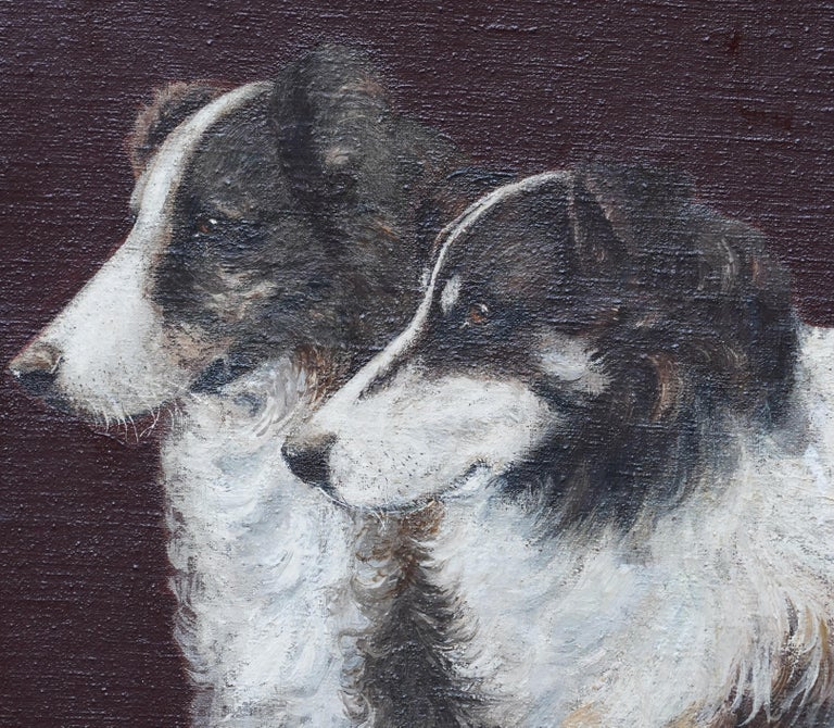 Portrait of Two Collie Dogs- British Edwardian dog art oil painting animals - Realist Painting by Unknown