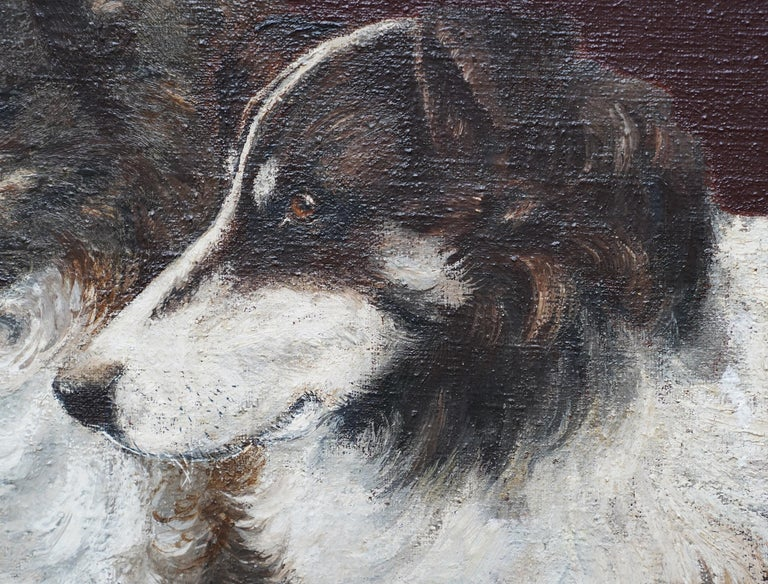 Portrait of Two Collie Dogs- British Edwardian dog art oil painting animals - Brown Animal Painting by Unknown