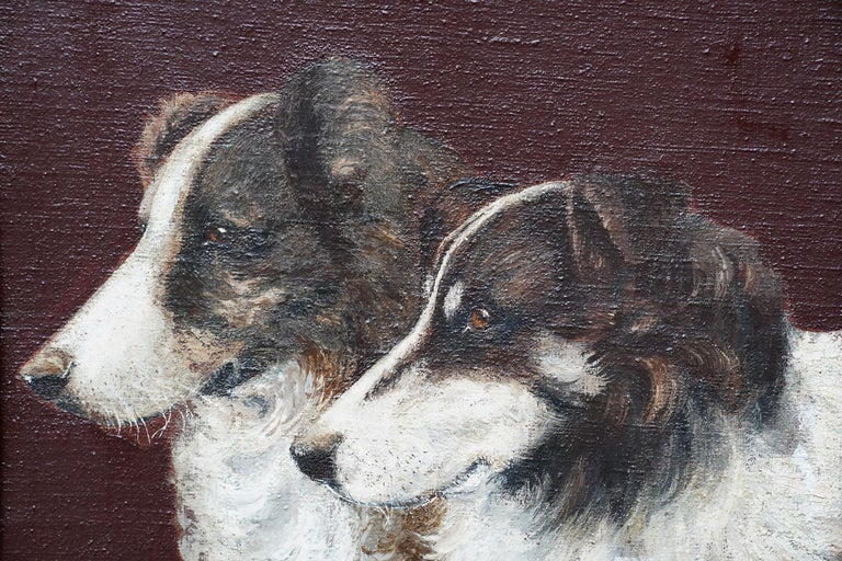 Portrait of Two Collie Dogs- British Edwardian dog art oil painting animals For Sale 1