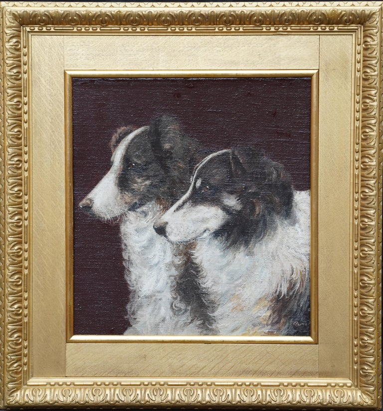 Unknown Animal Painting - Portrait of Two Collie Dogs- British Edwardian dog art oil painting animals