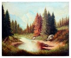 Reflecting Redwood Trees - California Landscape