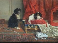 Salon Dogs