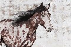 Stallion Horse Painting Fine Art Hand Embellished Giclee on Canvas Irena Orlov