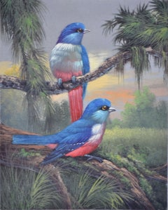 Tropical Blue Birds in Paradise