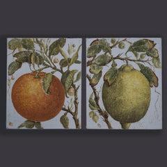 Two Oils on Canvas – A Stylised Orange and Lemon
